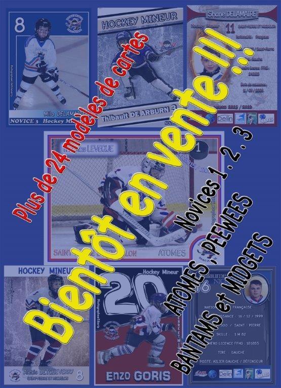 modele cartes hockey 1